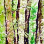 Amita Bamboos Series 3