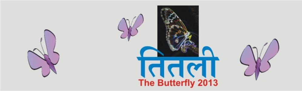 Exhibition Titlee-The Butterfly 2013