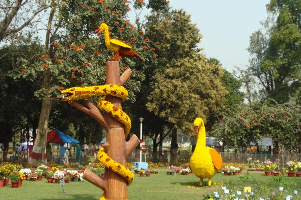 2018 SC 66 Ujwala Dahake 2 Garden Festival